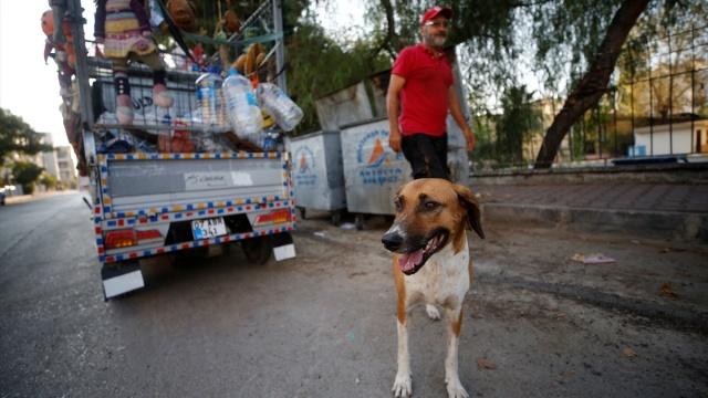 Antalya'da konteynerlerden topladığı kartonları satarak geçimini sağlayan Ali Çevik, çöpten bulduğu oyuncakları temizleyerek verdiği ihtiyaç sahibi çocukların mutluluğuna ortak oluyor.