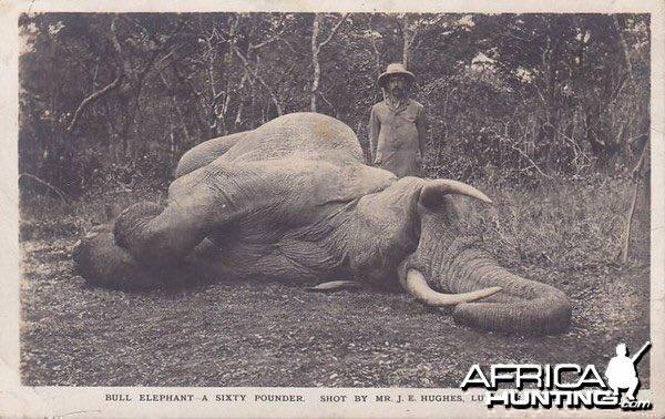 """""""Batı Medeniyeti""""nin Afrika'daki fotoğrafı.."""