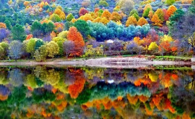 Sonbahar farklı renklerin açığa çıktığı bir mevsim