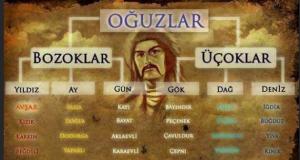 İşte Türklerin soyağacı! Hangi il bakın hangi boydan geliyor