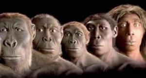 Charles Darwin'in 'Türlerin Kökeni' kitabının 161. Yılında Evrim Teorisine Cevaplar: