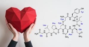 Kovid-19'un tedavisinde potansiyel taşıyan Oksitosin hormonu nedir, ne işe yarar?