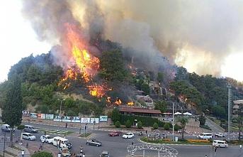 Manavgat'ta bir hektar alan yandı