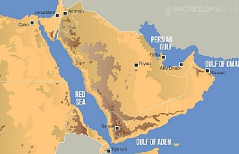 Mısır körfezdeki güvenliği için Bahreyn'de