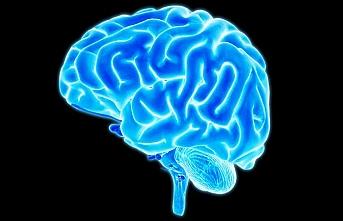Afrika'da bir ilk: Beyin dokusu bankası