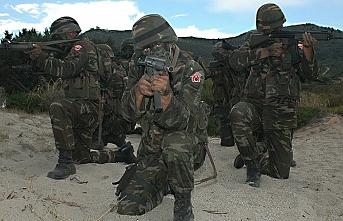 Siirt'te PKK'lı teröristlere operasyon