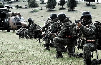 Vatandaşların ihbarıyla operasyon düzenlendi