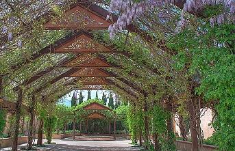 Endülüs bahçeleri Meksika'da yaşıyor
