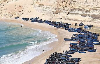 Fas'tan Cezayir'e uzatılan zeytin dalında Batı Sahra izi