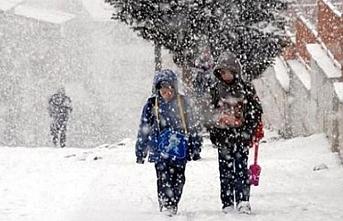 Bitlis'in 3 ilçesinde yarın okullar tatil