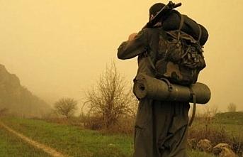 Şırnak'ta bir PKK'lı teslim oldu