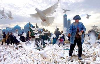 Afganistan'da zoraki barış