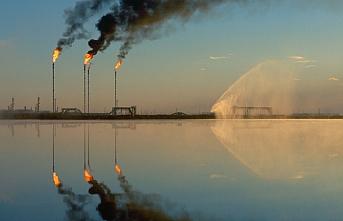 Nazarbayev'in istifasının sebebi OPEC iddiası
