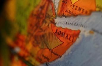 'Türkiye'nin çabaları Afrika Boynuzu için çok değerli'