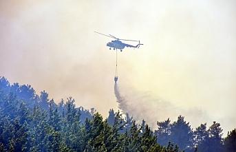 Çin'deki orman yangının nedeni ortaya çıktı