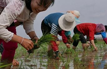 Güney Kore'den Kuzey'e 8 milyon dolarlık yardım