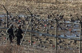 Kore'de Askerden Arındırılmış Bölge'de 100 parça kemik bulundu