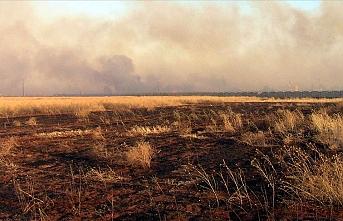 Suriye'de binlerce dönümlük ekili tarım arazisi yakıldı