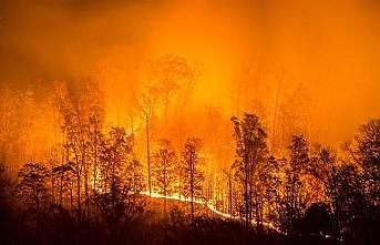 Altı gündür yanan Sibirya'da 3 bin hektar kül oldu