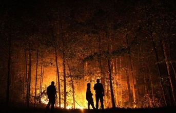 Rusya'da 3 milyon hektarı aşkın orman kül oldu