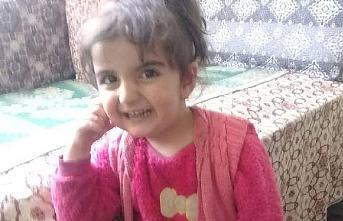 Tokat'ta kaybolan 3 yaşındaki kız 1 yıldır bulunamadı