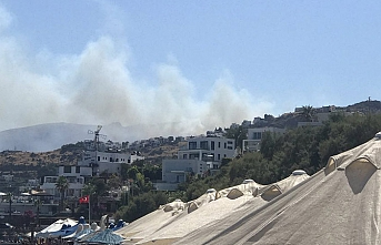 Yangın sırası Bodrum'da