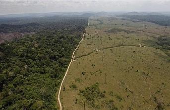 Amazon ormanları raporu hazırlayan ajansın başkanı görevinden ayrıldı