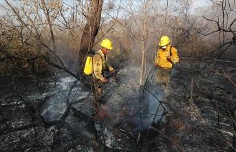 Amazonlardaki yangınlara çözüm için zirve düzenlenecek