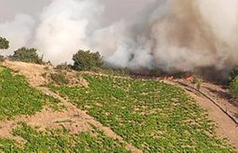 Bakan'dan yanan ormanlık alana imar yasağı sözü