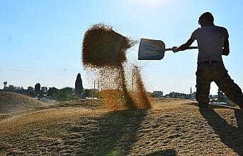 Bakan Pakdemirli: Çiftçinin desteği yarın saat 18:00'de ödenecek