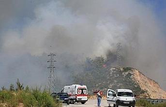 Bodrum ve Milas'da yangın çıktı