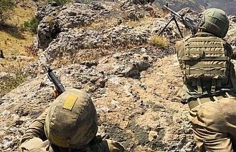 Erzincan Kemah kırsalında 2 terörist daha etkisiz hale getirildi