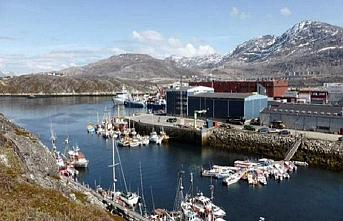 Grönland Dışişleri Bakanlığı: Satılık değiliz