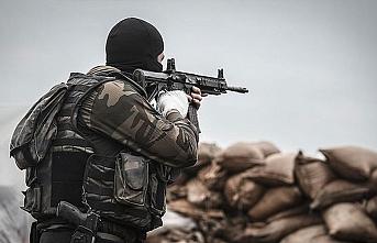 Gri listede 300 bin lira ödülle aranan terörist etkisiz hale getirildi