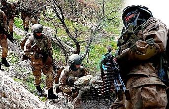 Van'da PKK'ya geçit yok: 5 terörist öldürüldü