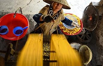Vietnam'da kızgın kazanlar başında ipek böcekçiliği