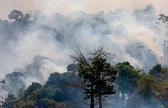 Yeryüzündeki oksijenin yüzde 20'sini sağlayan Amazonlardan kötü haber