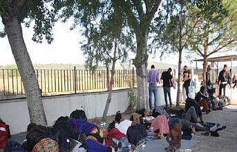 Ayvalık'ta 68 göçmen yakalandı