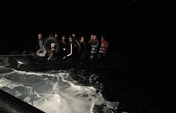 Bodrum'da 31 göçmen yakalandı