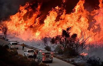 California'nın kuzeyindeki orman yangını sürüyor