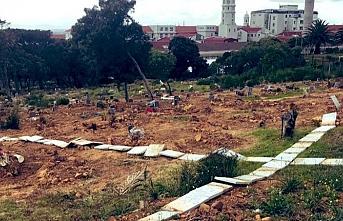 Cape Town'da mezarlık talanı