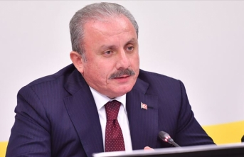 TBMM Başkanı Şentop, Strazburg'da Türk vatandaşlarıyla görüştü