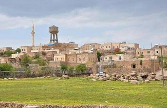 Mardin'de 2 muhtar açığa alındı