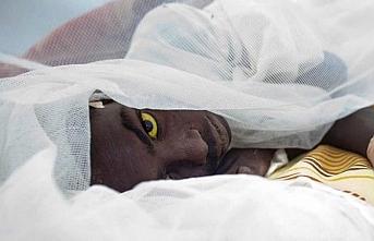 Nijerya'da sarı humma salgınından 10 kişi öldü