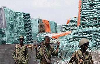 Somali'ye silah ve kömür ambargosu hakkında karar