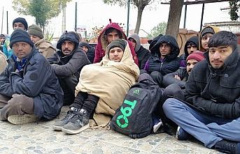 Kamyonette 46 göçmen yakalandı