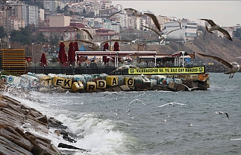 Lodos İstanbul'da deniz ulaşımını engelledi