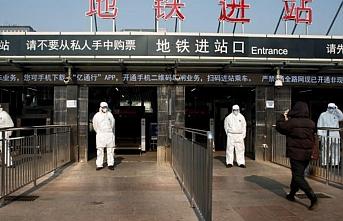 Çin'de yabani hayvan ticaretine yasak