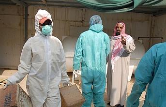 Kuveyt Suudi Arabistan'dan tavuk ithalatını durdurdu