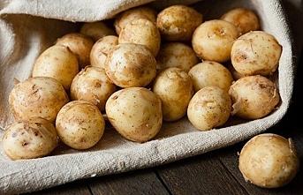 Tacikistan'da yeni bir tatil ilan edildi...Patates tatili